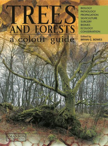 trees and forests study guide