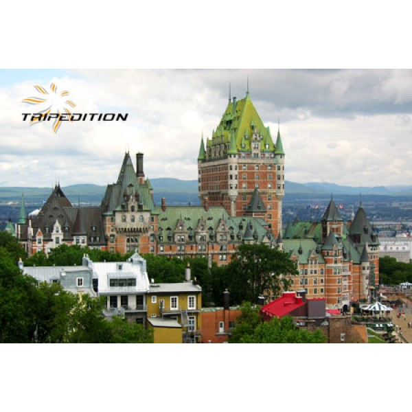 montreal guided city tour by bus